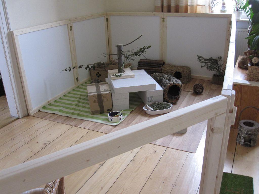 hasengehege innen brauche mal eine entscheidungshilfe zum. Black Bedroom Furniture Sets. Home Design Ideas