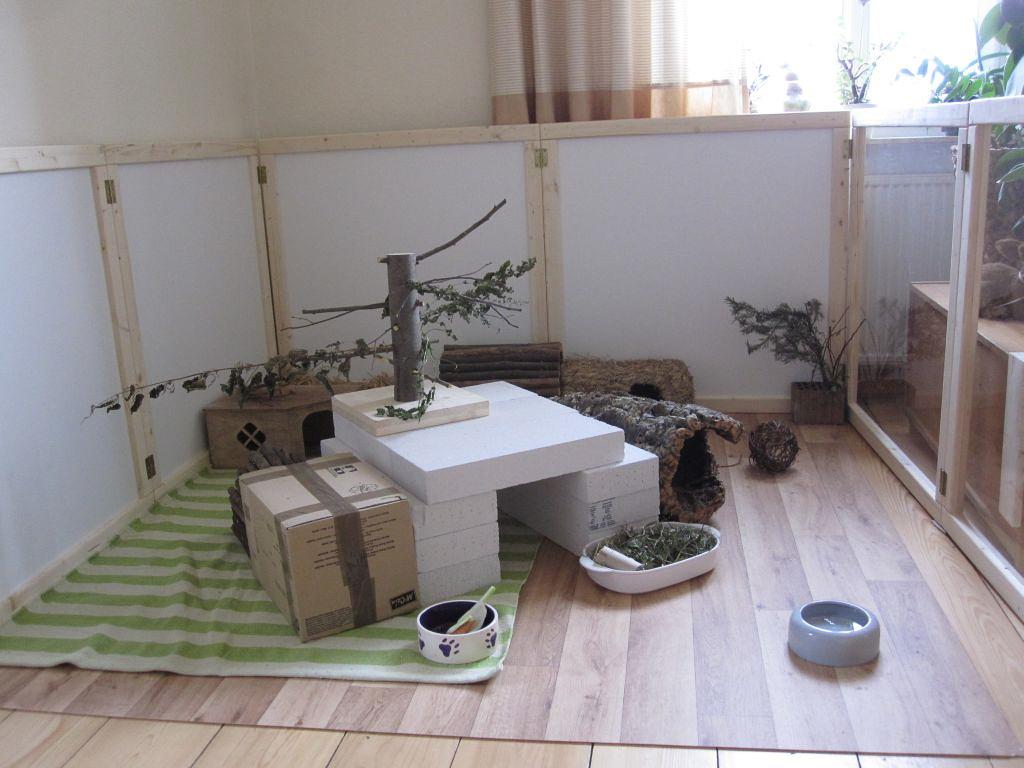 gehegebeispiele innen kaninchenhilfe deutschland e v aktiv f r kaninchen. Black Bedroom Furniture Sets. Home Design Ideas