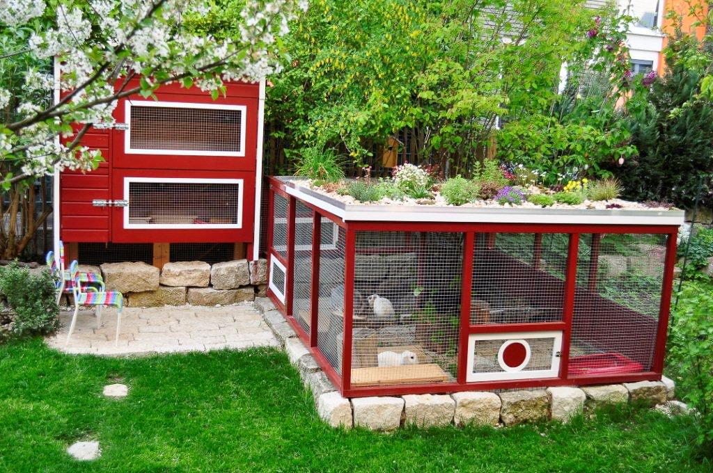 au enhaltung kaninchenhilfe deutschland e v aktiv f r kaninchen. Black Bedroom Furniture Sets. Home Design Ideas